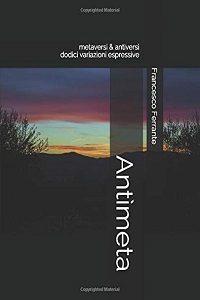 Antìmeta. Metaversi & Antiversi di Francesco Ferrante